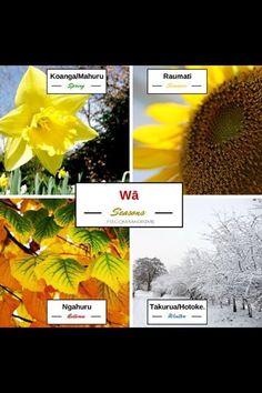 Seasons Child Development, Teaching Resources, Seasons, Spring, Centre, Language, Live, Children, School