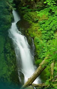 cascade falls- up past cottage grove and east of roseburg and glide