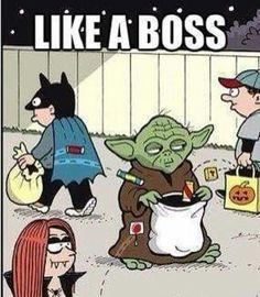 Star Wars Yoda on Halloween. Bd Star Wars, Star Wars Meme, Star Wars Art, Stormtrooper, Darth Vader, Images Star Wars, Star War 3, The Force Is Strong, Love Stars