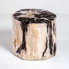 Interlude Home Lestari Petrified Wood Side Table