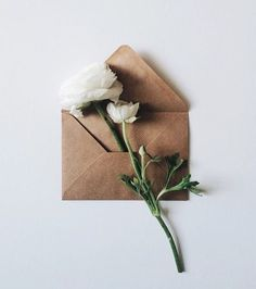 With Valentine's Day just around the corner you're maybe wondering what to do for your sweet one.. Some advice: a love letter is always good but a love letter tucked into an Aevi box is even better. #loveletters #aevi by aevibox