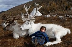 Mongolia - what a way to grow up.
