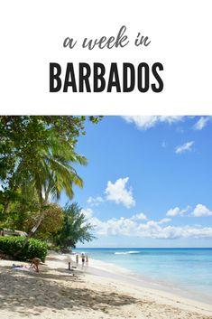 British West Indian Airways Trinidad Barbados Retro Airline Poster Art Print 121