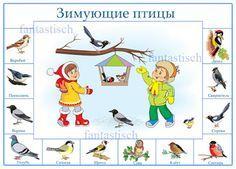 Играем до школы: Зимующие птицы Fall Preschool Activities, Winter Activities For Kids, Winter Crafts For Kids, Winter Kids, Book Activities, Teaching Kids, Kids Learning, Feeding Birds In Winter, Animal Crafts For Kids