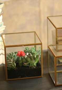 Display your favorite décor accessories or stunning succulents in posh style inside your choice of accent boxes, that are adorned with an antique brass finish. Their combination of materials is glamour cubed.