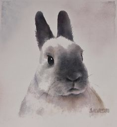 Bunnies Wall Art - Painting - Rabbit Portrait by Teresa Silvestri Rabbit Pictures, Bunny Painting, Year Of The Rabbit, Rabbit Art, Bunny Art, Watercolor Animals, Watercolor Art, Animal Paintings, Acrylic Paintings