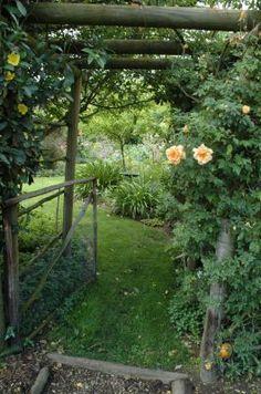 Vegetable pergola pinned by bradley talbert remodel for Vegetable garden pergola