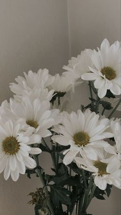 Flowers 🌺 on Twitter in 2021 | Flower aesthetic, Aesthetic iphone wallpaper, Flowers