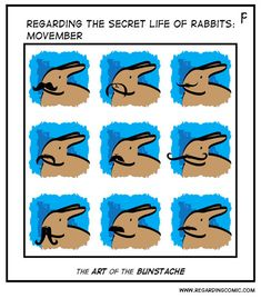 Guest therapy rabbit, Daria, helped with this one! (A special thanks to Bunny Slave Rachel) Cute Baby Bunnies, Funny Bunnies, Cute Funny Animals, Cute Baby Animals, Animals And Pets, Funny Rabbit, Pet Rabbit, Secret Life Of Rabbits, Bunny Meme