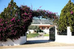 For sale - Real Estate in Greece -BOUGAINVILLEA VILLA DARDIZA - 3 kms from Ermioni with partial seaviews. Set over 2 floors, it comprises of 3 bedrooms and 3 bathrooms.  More information, please contact GeoLand Real Estate in Ermioni: Anastasios Kikinas: + 30 6977 294075 - anastasioskikinas... ermioni.info@gmai... +30 694 691 4453/+30 695 184 5407