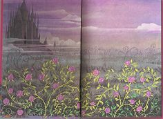 sleeping beauty endpapers    1974 walt disney productions