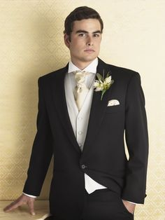 FH Bow Tie Male Wedding Dress Groom Groomsman Wedding Man Color : C