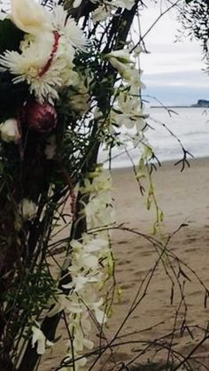 Arch Flowers, Beach, Plants, Wedding, Valentines Day Weddings, The Beach, Beaches, Plant, Weddings