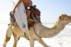 Camel ride to the beach.