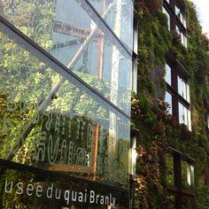 Gorgeous living wall, Paris: Musee du Quai Branly