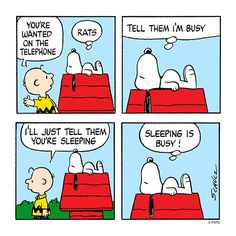 Snoopy and Charlie Brown. Snoopy knows the importance of sleep!