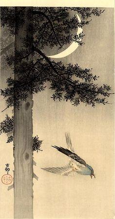 Cuckoo and Moon, Ohara Koson (1877 – Tokyo 1945)  ~Repinned Via Robin Wells