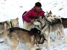 """Als """"Dog-handler"""" moest ik 6 Husky's trainen als voorbereiding op de aankomende wedstrijden."""