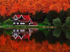 En la cabaña del lago...