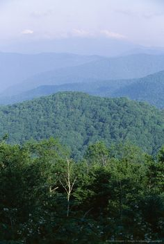 Looking over the Appalachian mountains from the Blue Ridge Parkway in Cherokee Indian Reservation, North Carolina, United States of America (U.S.A.), North...