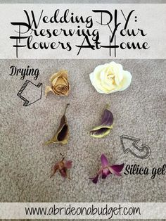 Preserving Your Flowers