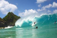 surfing in Brazil.