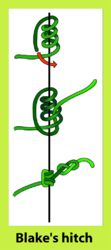 The Blake's Hitch is a friction hitch commonly used by arborists and tree climbers as an ascending knot.