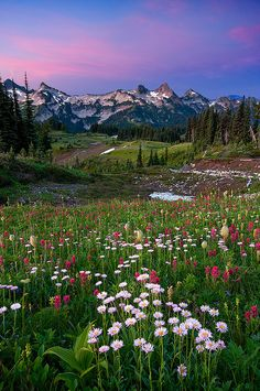 Mount Rainier, Tatoosh Range, Washington state - Photo by by Jesse Estes, via Flickr http://www.flickr.com/photos/rasone/2808464958/in/photostream