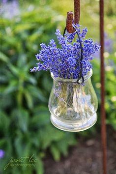 Bom dia! Nada melhor que os ares da Provence para fechar a semana. Veja que lindas imagens, e como é encantador tudo que envolve essa plant...