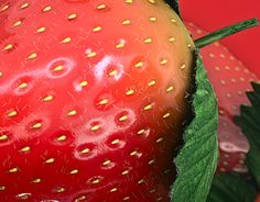 """Check out new work on my @Behance portfolio: """"Strawberry"""" http://be.net/gallery/52055533/Strawberry"""