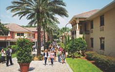 Visit Southeastern University - Christian University in Lakeland, Florida Southeastern University, College Necessities, Prayer List, Christian College, Student Learning, College Life, Ministry, Schools, Dorm