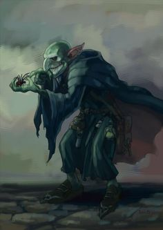 Image result for robed goblin