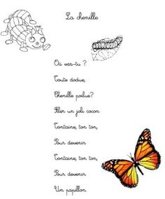 Thème de juin : Les insectes, autour des albums d'Antoon Krings - Activités pour la Grande section maternelle French Teaching Resources, Teaching French, Camille La Chenille, Core French, Grande Section, French Immersion, French Teacher, Eric Carle, French Lessons