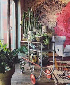 Feels like Spring today at the showroom. @dovedrury cacti garden at #88prince | #martynthompsonstudio