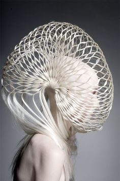 Nautilus sculptural shell hood, hair fashion. 2011... Would never rock this but this person has crazy talent!