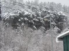 Snow everywhere