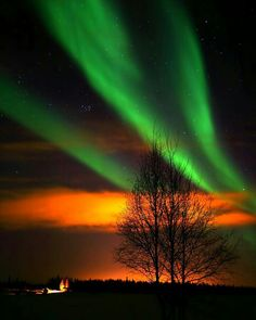 Aurora Photograph - Chena Lake Aurora by Ronald Lafleur Beautiful Sky, Beautiful Pictures, Sky Photos, Sky Art, All Nature, To Infinity And Beyond, Natural Wonders, Cosmos, Night Skies