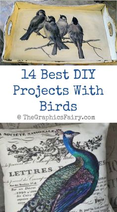 14 Best DIY Projects With Birds - The Graphics Fairy