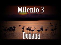 Milenio 3 - Doñana: el parque del Misterio - http://www.misterioyconspiracion.com/milenio-3-donana-el-parque-del-misterio/