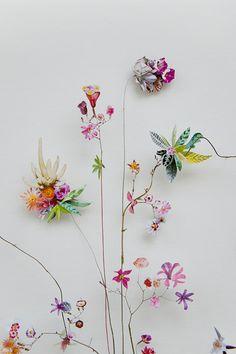 Flower constructions - Anne Ten Donkelaar Flower Collage, Flower Wall, Dried Flowers, Paper Flowers, Dali Artwork, Mobile Art, Pressed Flower Art, Fused Glass Art, Flower Pictures