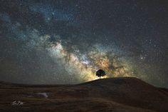 """Alone - A Gift of Solitude"".  Black Hills, South Dakota Night Sky."