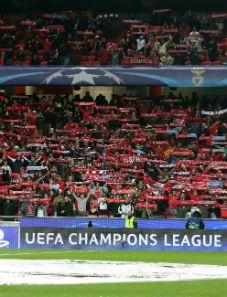"""O """"colinho"""" do Benfica, os seus adeptos!!!"""