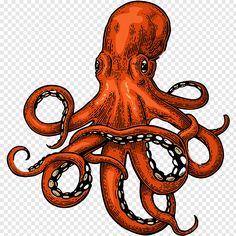 Squid Drawing, Octopus Drawing, Sea Drawing, Octopus Art, Octopus Painting, Octopus Sketch, Animal Sketches, Art Sketches, Art Drawings