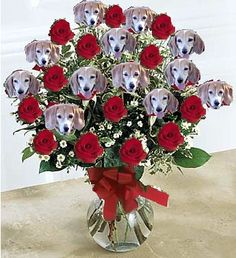 Valentine Beagles, you know I am a sucker for dog stuff this is unique,