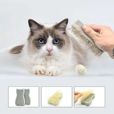 Groom your pet and keep your home fuzz-free. This handy tool is much smaller than a vacuum cleaner and works better than a regular grooming brush. Pet Hair Removal, Dog Cookies, Disney And More, Cute Love Quotes, Scandinavian Design, Cute Hairstyles, Animals And Pets, Best Dogs, Pet Supplies