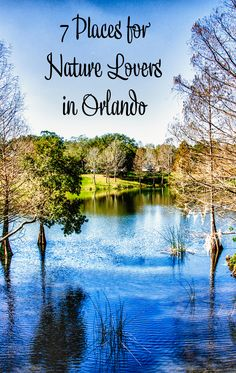 Orlando Travel Tips: 7 places for nature lovers in Orlando. Things to do in Orlando. Things to do in Orlando that are not theme-park related. Things to do in Orlando other than theme parks.