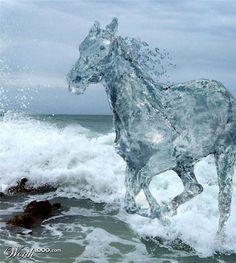 Google Image Result for http://www.designdazzling.com/wp-content/uploads/2011/01/water-born-photomanipulation.jpg