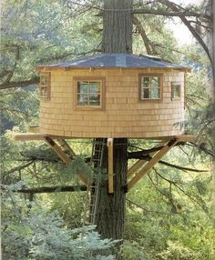 A round treehouse