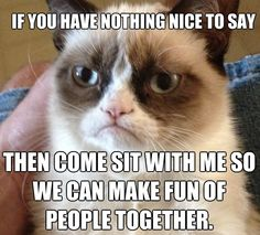 Grumpy Cat Commiserate