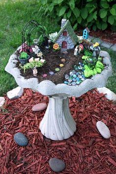 10 Amazing Miniature Fairy Garden Ideas Gnome Garden In A Bird Bath! My Fairy Garden, Fairy Gardening, Bird Bath Garden, Fairies Garden, Garden Plants, Easy Garden, Balcony Garden, Container Fairy Garden, Container Gardening